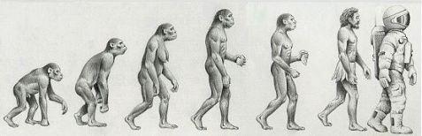 Darwin Evolution ARDI study and Spiritual Science