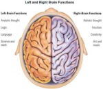 Aggies left and right brain