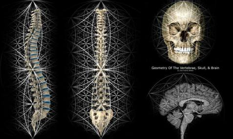 Age of America 3 skeletal Phantom Design, Ancient Saturn Evolution and Zodiacal ART cohesion of human form